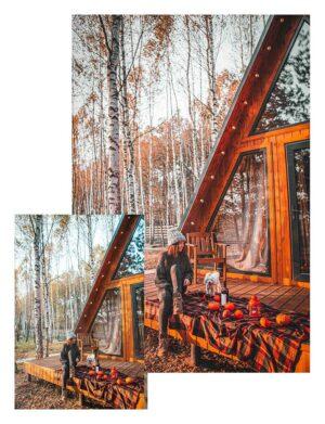 Preset pumpkin - chata w lesie